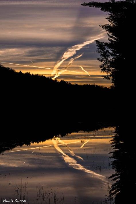 Kawartha Canoe-0267.jpg